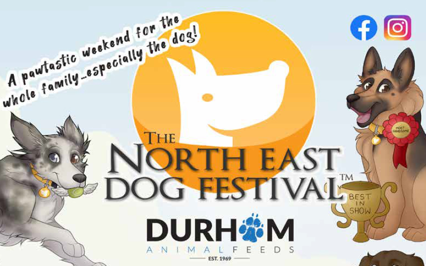 tyne valley express north east dog festival